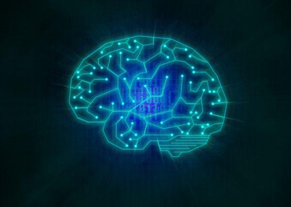 脳科学と認知心理学からみた【記憶】のお話